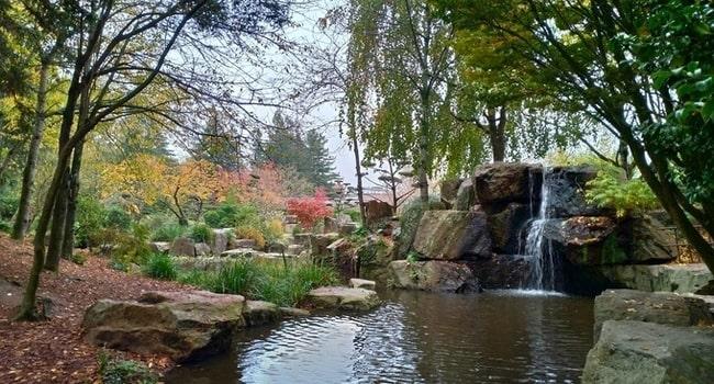 L Ile De Versailles Un Jardin Japonais En Plein Coeur De Nantes